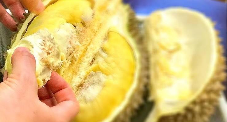 Fruta é conhecida pelo cheiro ruim
