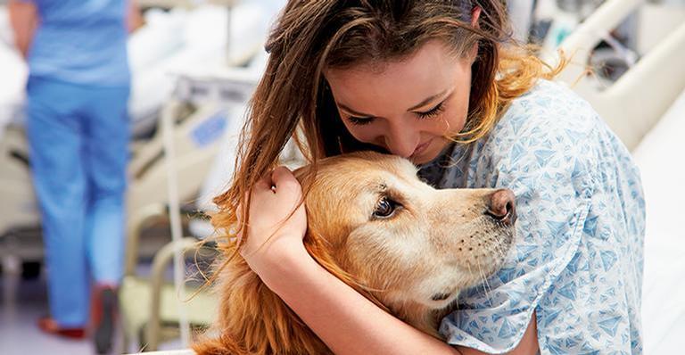 O número de pessoas que são alérgicas especialmente aos animais é menor do que se pensa